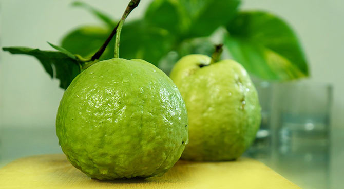 Amazing Health Benefits of Guava in Hindi