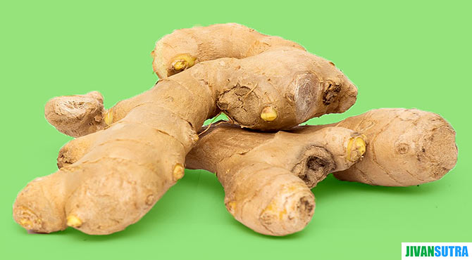 Ginger Benefits in Hindi