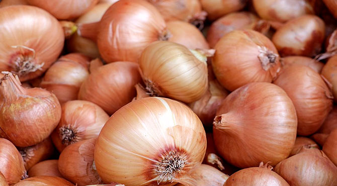 Surprising Health Benefits of Onions in Hindi