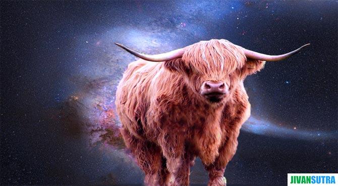 Taurus Zodiac Sign in Hindi