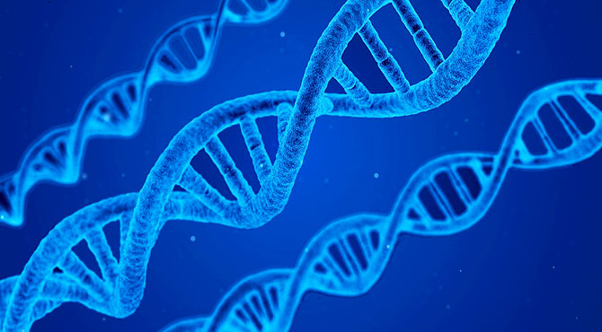 Incredible Facts about Human DNA in Hindi