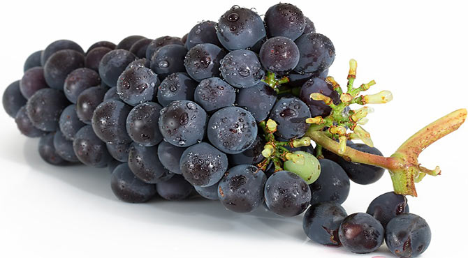 Incredible Health Benefits of Grapes in Hindi