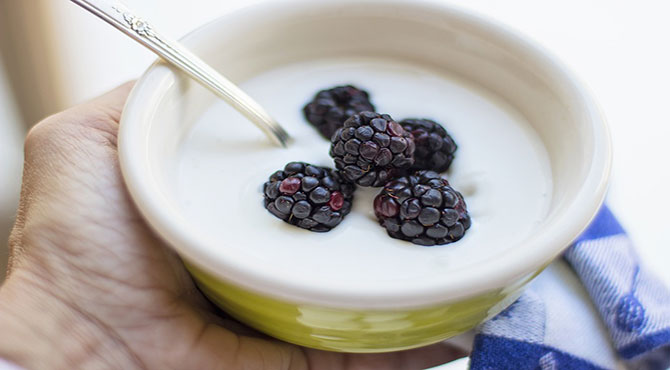 Health Benefits of Yogurt in Hindi
