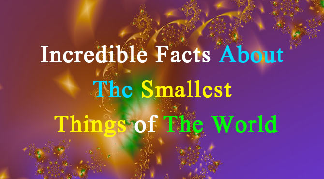 Smallest Things in The World in Hindi